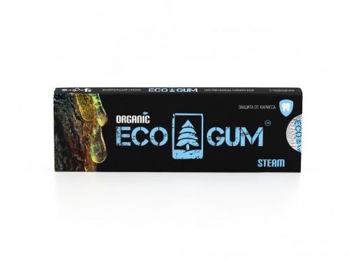 Жевачка eco gum steam (5гр)