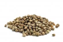 Семена конопли 200гр